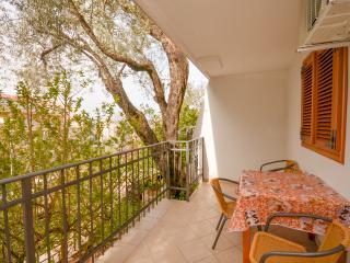 Apartments Jelena - 92851-A1 - Przno vacation rentals