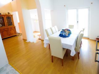 Villa Ivana - V2351-K1 - Mrljane vacation rentals