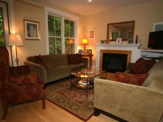 Perfect 3 bedroom Stowe House with A/C - Stowe vacation rentals