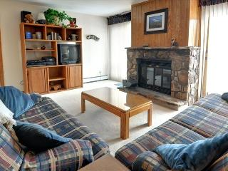 BUFFALO VILLAGE 306: 2 Bed/2 Bath, Comfortable & Affordable, Elevator, Clubhouse, Lots of Trails Nea - Silverthorne vacation rentals