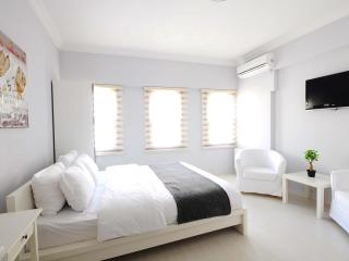 Studio in Taksim, 30 Second to Istiklal Street 9 - Istanbul vacation rentals