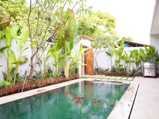Anemalou Two Bedroom Pool Villa - Seminyak vacation rentals