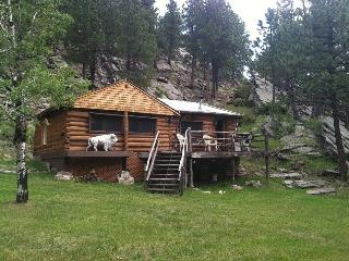 Lost Bison Cabin - Black Hills and Badlands vacation rentals