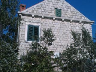 Apartment in villa on seashore in Zaton Mali - Zaton vacation rentals