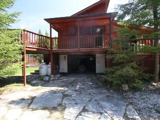 Julian cottage (#851) - Lions Head vacation rentals