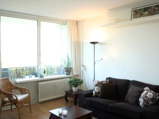 Nice 1 bedroom Utrecht Condo with Elevator Access - Utrecht vacation rentals