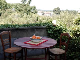 House in the heart of Corbieres wine country. - Douzens vacation rentals