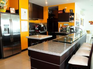 Magnificient Ocean Front Penthouse: - Colombia vacation rentals