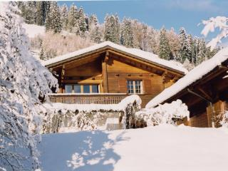 Lovely 5 bedroom Ski chalet in Moleson - Moleson vacation rentals