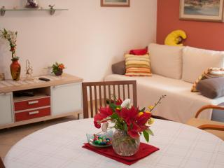 Split apartment with balcony!!! - Split vacation rentals