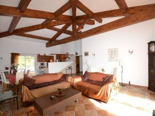 Nice Villa with Internet Access and Central Heating - Antibes vacation rentals