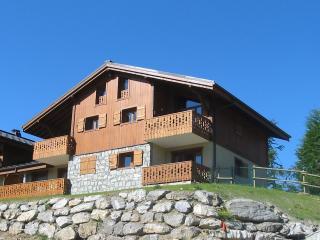 UcanSki - Les Carroz 'd'Araches Apartment - Les Carroz-d'Araches vacation rentals