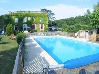 Beautiful 3 bedroom Fontenay-le-Comte Chateau with Internet Access - Fontenay-le-Comte vacation rentals