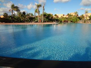 Apartments with spectacular saltwater pools + Wifi - Corralejo vacation rentals