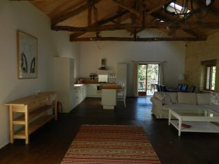 Bright spacious gite near Cahors with pool - Prayssac vacation rentals