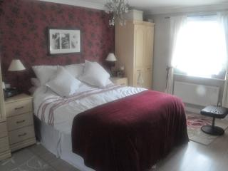 2 king size en-suite rooms & driver to Stadium! - Cardiff vacation rentals