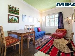 Typical Istanbul Wooden House, ideal for couple - Istanbul vacation rentals
