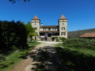 Chambres d'hôte with pool near Cahors - Prayssac vacation rentals