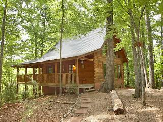 1 bedroom Cabin with Television in Sevierville - Sevierville vacation rentals