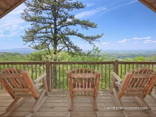 Perfect Cabin with Deck and Television - Sevierville vacation rentals