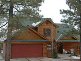 Cedar Ridge Cabin - Image 1 - Pagosa Springs - rentals