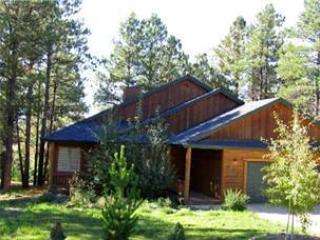 Joe's Place - Image 1 - Pagosa Springs - rentals