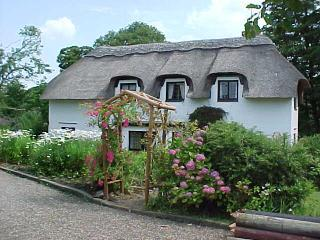 Thatched cottage with 4.5 acre wood on River Doon - Ayr vacation rentals