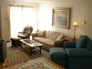 Cozy Condo with Fitness Room and Parking - Copper Mountain vacation rentals