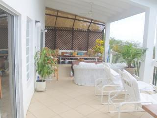 Out door Living  at cottage - Our Place in St Thomas, The cottage - Red Hook - rentals