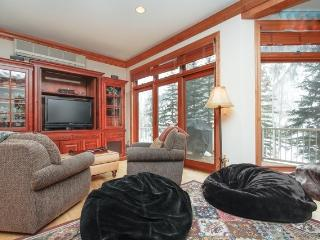 Bright Condo with Internet Access and A/C - Vail vacation rentals