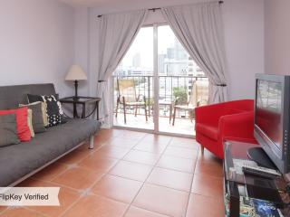Nice Condo with A/C and Satellite Or Cable TV in Miami Beach - Miami Beach vacation rentals