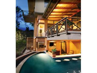 Pool - Bar - Terraces - Views - 5 Suites / 12 Guests - New- Oceanviews-Total A/C ! - Manuel Antonio National Park - rentals