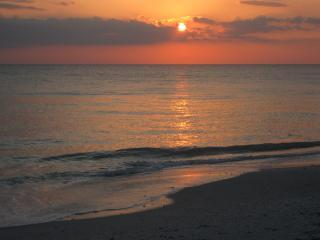 Waterfront 70 Steps to Gulf Island Paradise Cottage - Florida South Central Gulf Coast vacation rentals