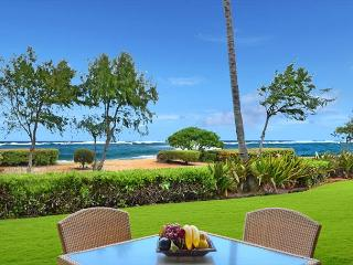 A106 Beach FRONT* w/yard & FAST wifi ****Call/E-mail NOW for **FAST quote** - Kapaa vacation rentals