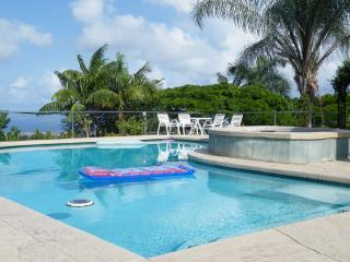 Your Private Pool - The Kona Heavens Hideaway - Kailua-Kona - rentals
