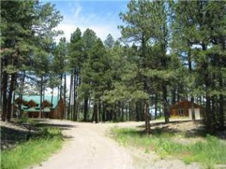 High Country Chalet - Image 1 - Pagosa Springs - rentals