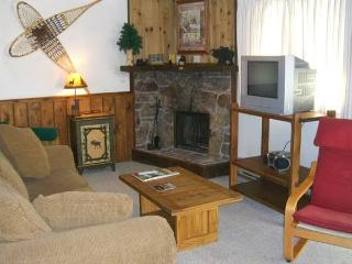 Nice House with Private Indoor Pool and Hot Tub - Crested Butte vacation rentals
