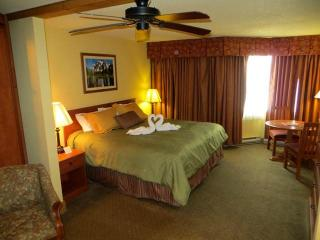 Grand Lodge #523 - Crested Butte vacation rentals