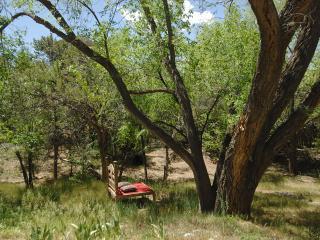 APPRECIATE HISTORY And LIVE IN LUXURY - Santa Fe vacation rentals