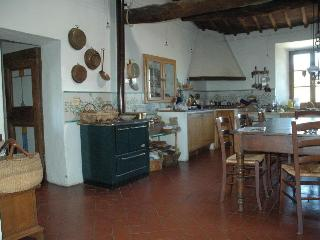 Nice Farmhouse Barn with Internet Access and High Chair - Rosia vacation rentals