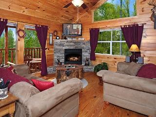 AUTUMN BEARADISE - Sevierville vacation rentals