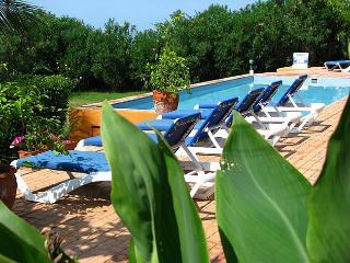 MARBLUE. the Collection - private Beachfront Villa - Treasure Beach vacation rentals