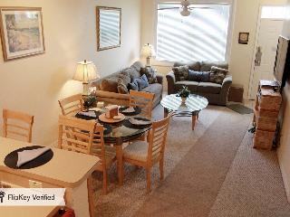 Got It All Waterfront, HDTV's, wi fi, near Disney! - Pigeon Forge vacation rentals
