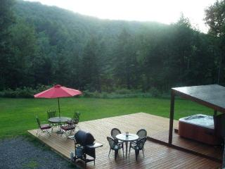 Charming Vermont Chalet with Hot Tub nr Woodstock & Killington - Bethel vacation rentals