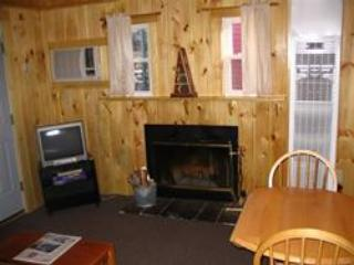 Fireplace - Sun Valley Cottages, Cottage #12 - Weirs Beach, NH - Laconia - rentals