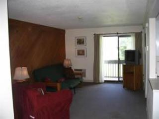 Sun Valley Cottages, Condo #225 - Weirs Beach, NH - Laconia vacation rentals