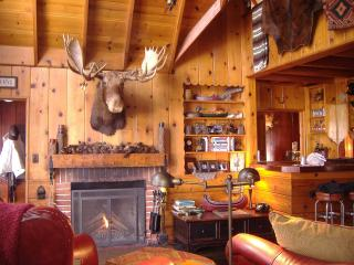 Restored 1926 Cabin + Ski Boat + Spa = Awesome - Lake Arrowhead vacation rentals