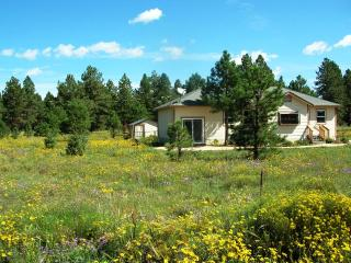 Black-Eyed Susan's Cottage - Flagstaff vacation rentals
