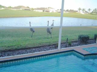 lovely 3 b 2 b home  Huntington Hills Lakeland FL. - Lakeland vacation rentals