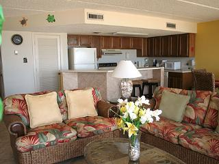 FLORENCE II 201 - South Padre Island vacation rentals
